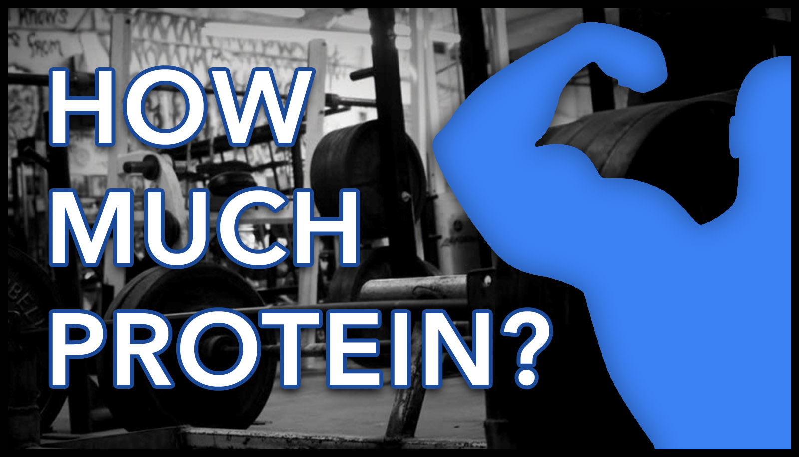 How Much Protein?