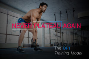 Never plateau again - The OPT Training Model