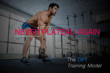Never plateau again - The OPT Training Model