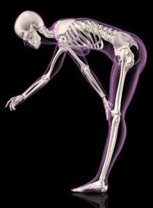 Female skeleton bending over